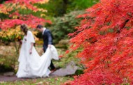 Some Ways to Brighten up Your Fall Wedding Photos