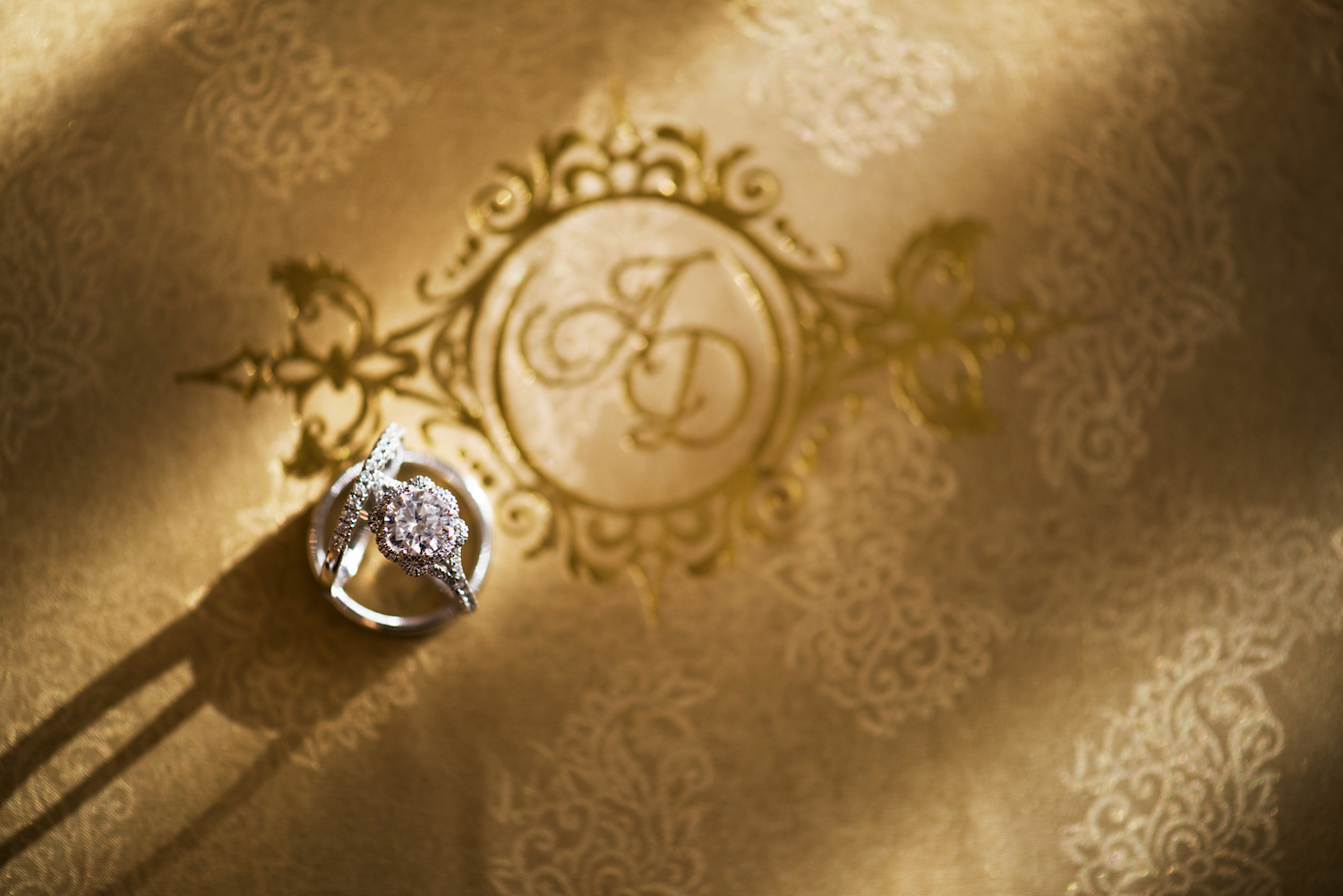 anita&delas-rings-wedding-photography-nj
