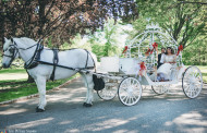 3 Transportation Tips from Our Vets of Wedding Videography in NJ